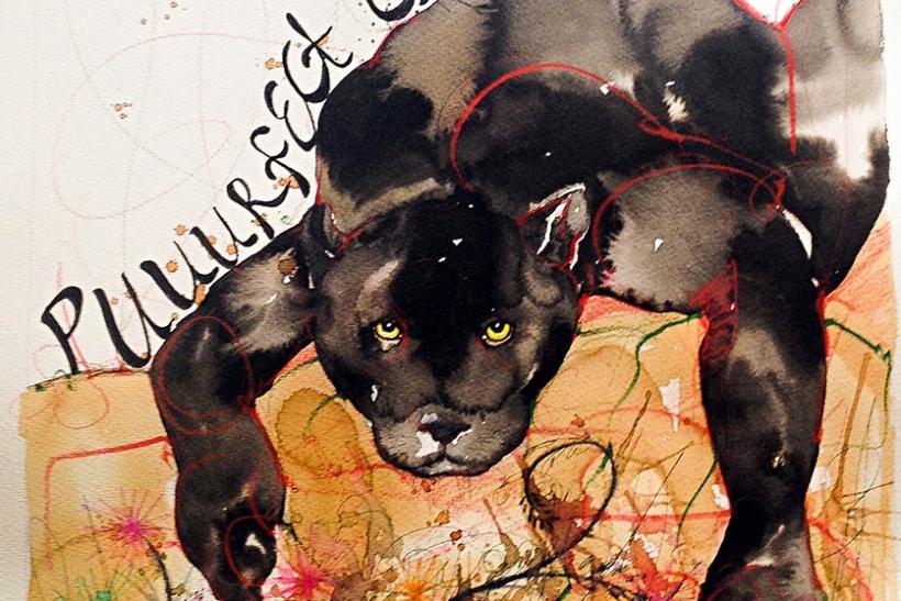 Ντέμη Κάια: Το τέλειο γατί