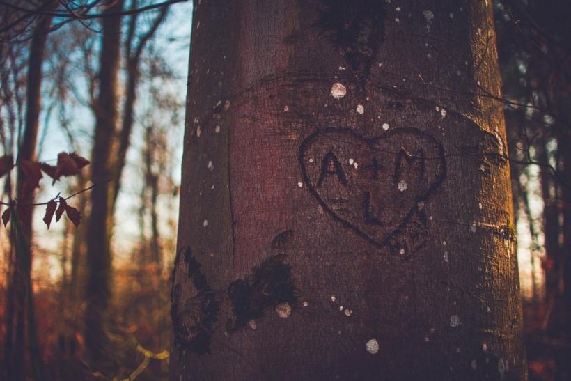 Βρες την αγάπη που θα ομορφύνει τη ζωή σου
