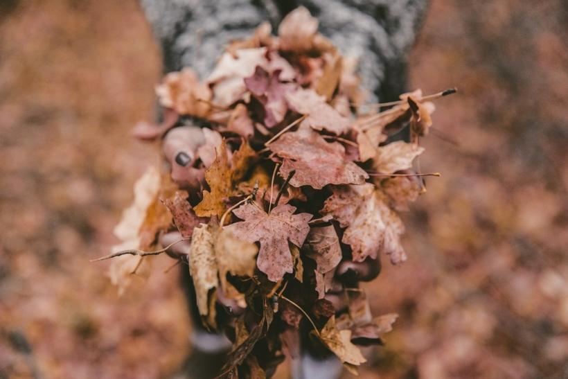 Υπάρχουν τόσοι λόγοι να αγαπήσεις το φθινόπωρο
