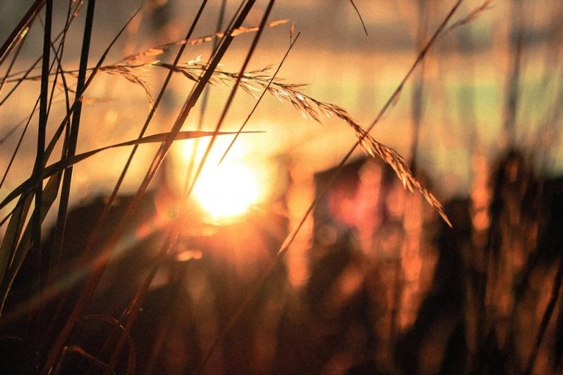 Η ανατολή του ηλίου είναι η ομορφότερη στιγμή της ημέρας