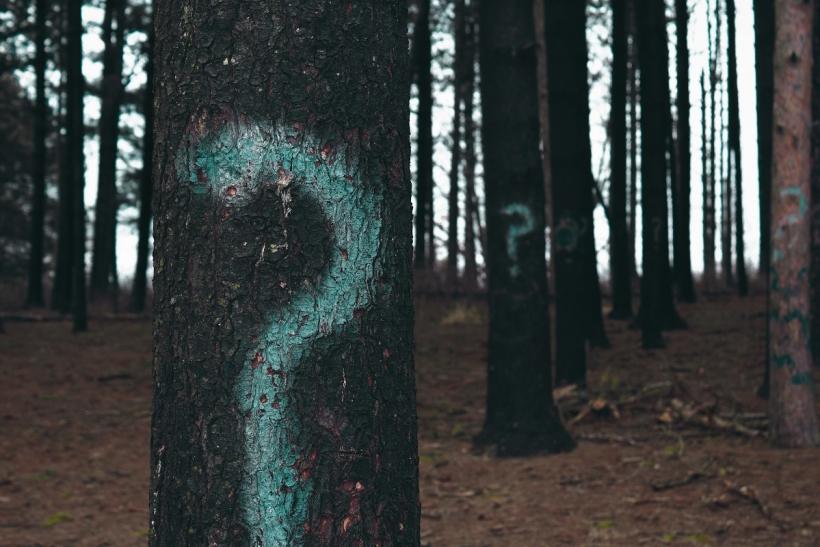 Το «πού είσαι;» σημαίνει «γιατί δεν είσαι εδώ;»