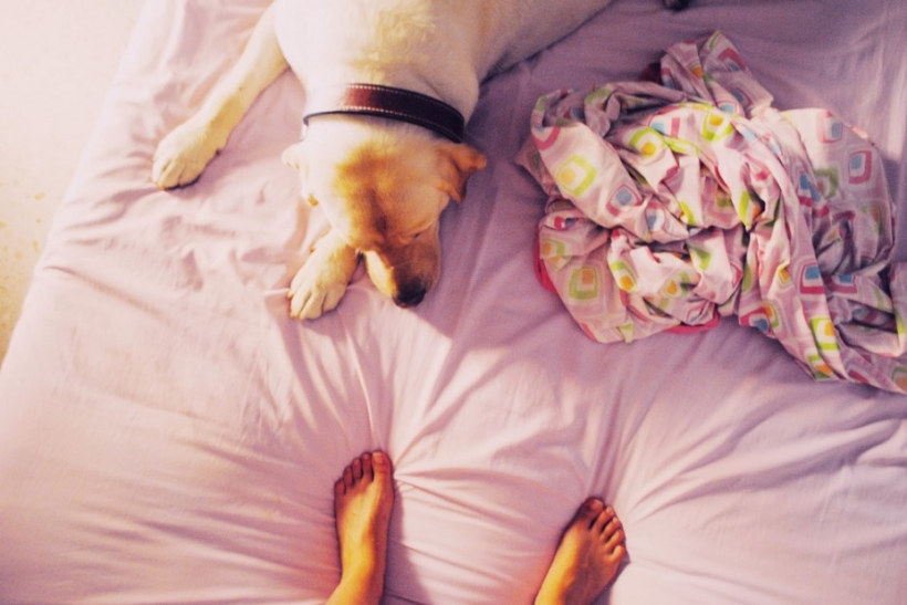 Το κρεβάτι μας θα 'ναι πάντα αυτό στο πατρικό μας