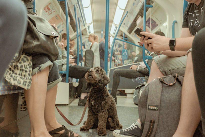 10 τύποι που θα συναντήσεις στο μετρό