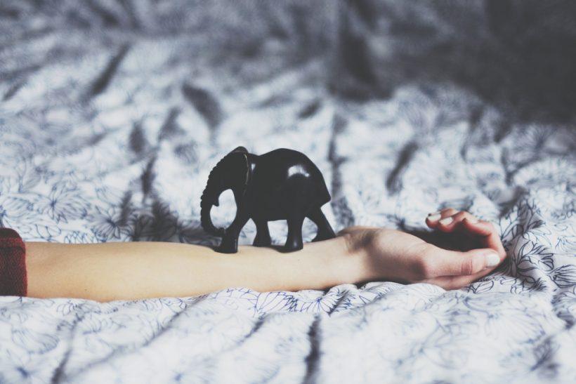 Το να έχεις μνήμη ελέφαντα δεν είναι πάντα δώρο