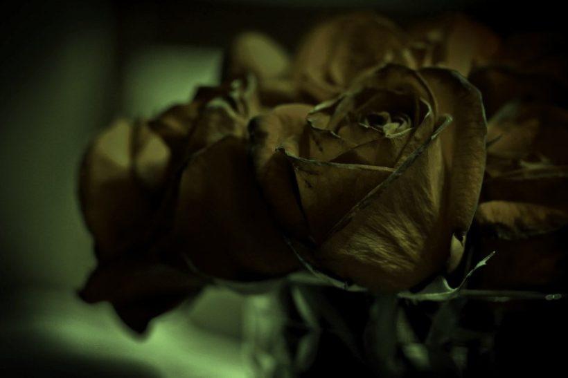 Μαζί στη ζωή∙ στον θάνατο; (Μέρος Γ')