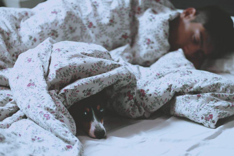 Το κρεβάτι ανήκει στο ταίρι ή στο κατοικίδιό μας;