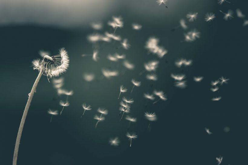 Μια ευχή δεν αλλάζει τίποτα, μια απόφαση τα αλλάζει όλα