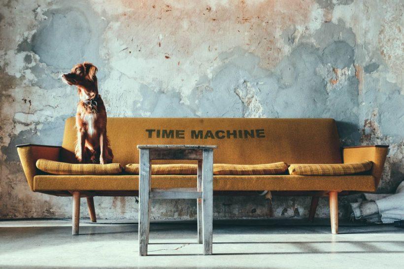 Σκέφτηκες ποτέ το Pet Therapy;