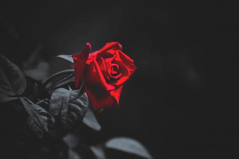 10 εγκλήματα από έρωτα που έμειναν στην ιστορία