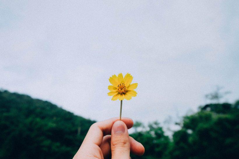Αν η ευτυχία ήταν πρόσωπο τι θα ήθελες να της πεις;