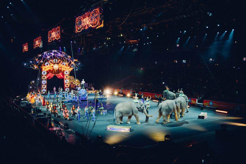 Το τσίρκο έχει τη δική του ιστορία!