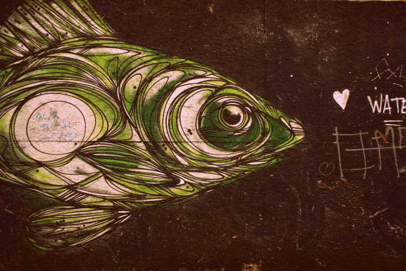 Την πρώτη μέρα στη δουλειά πάντα θα είσαι το απόλυτο ψάρι
