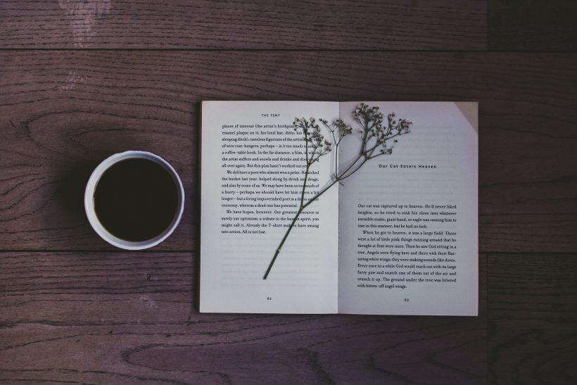 Διαβάζοντας λογοτεχνία λύνεις πιο εύκολα καθημερινά προβλήματα