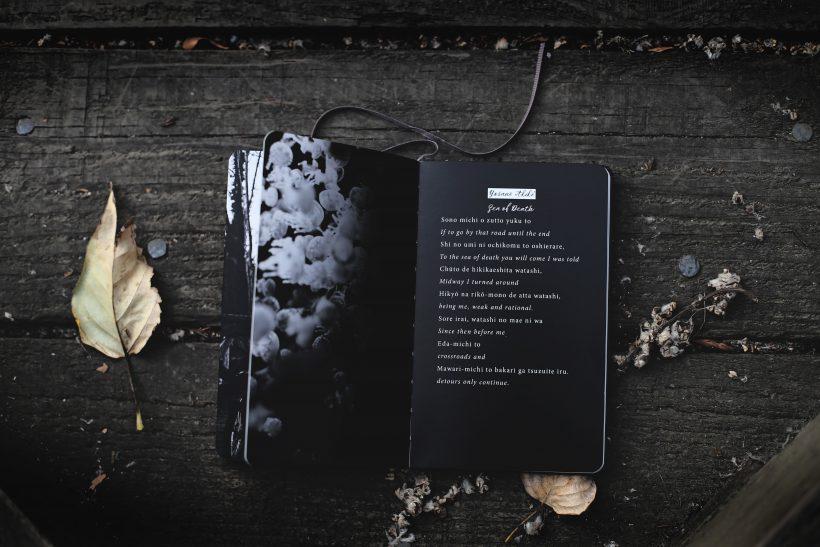Καταραμένοι ποιητές, χαμένοι στη μετάφραση
