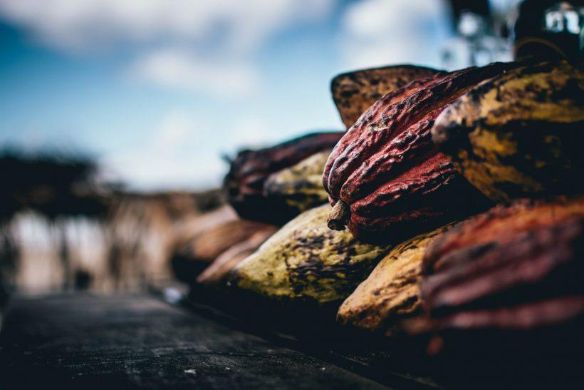 Fun facts και σκοτεινά μυστικά για την παραγωγή σοκολάτας