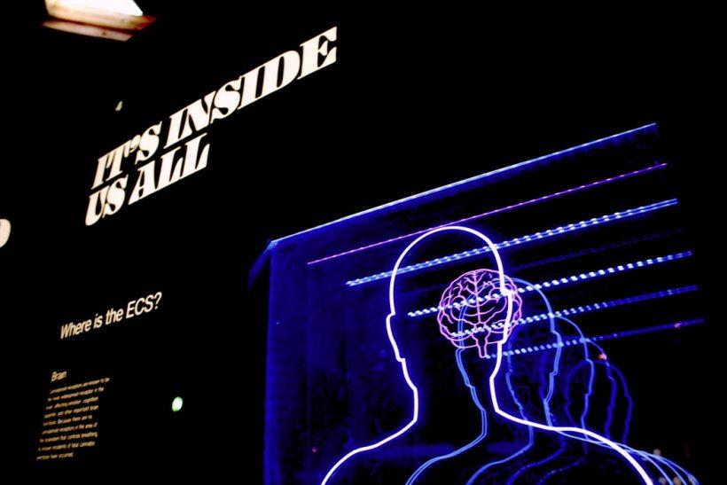 Ορίζει όσα είσαι ένα ημισφαίριο του εγκεφάλου σου;