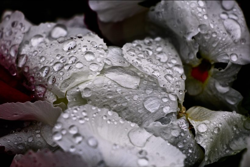 10 πράγματα για να κατανοήσεις καλύτερα τα δάκρυα