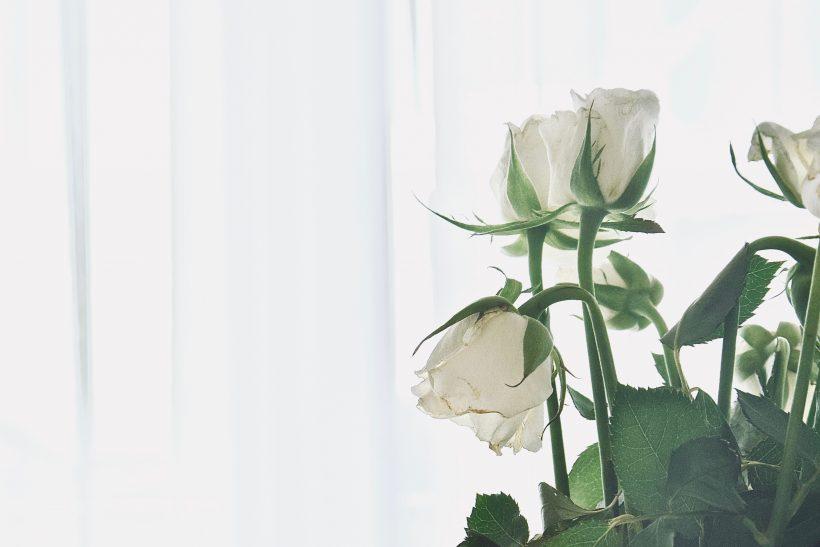 Wabi sabi· το μυστικό κρύβεται στην απλότητα