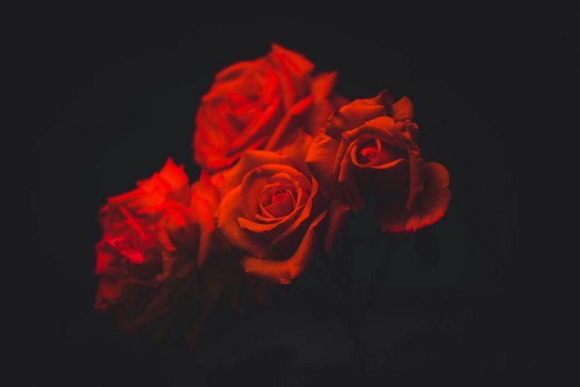 Aromantics: εκείνοι που δεν είχαν ποτέ την ανάγκη να ερωτευτούν
