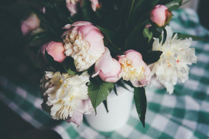 Ανακαλύπτοντας τη γλώσσα των λουλουδιών